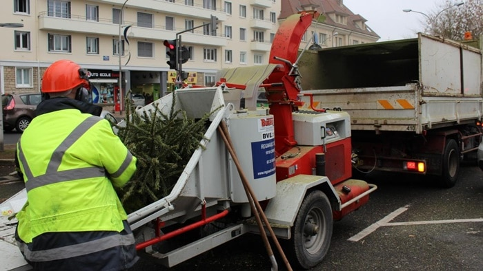 Troyes : le recyclage des sapins