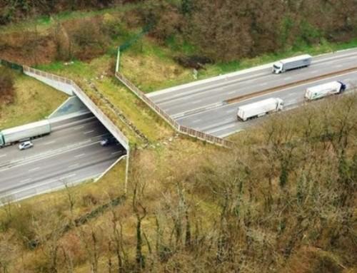 Autoroute A 89 : écopont et  environnement