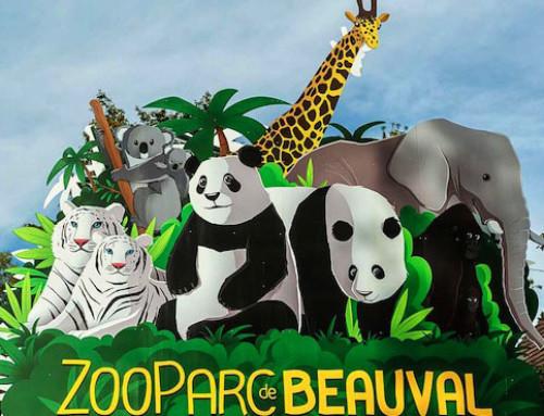Beauval : un ZooParc à l'environnement exceptionnel