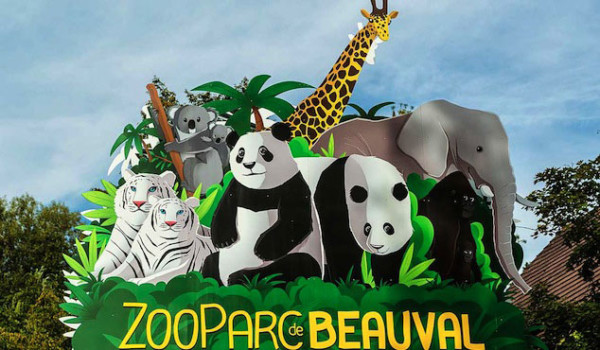beauval-zoo