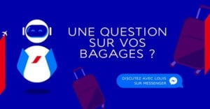 louis-air-france-bagages