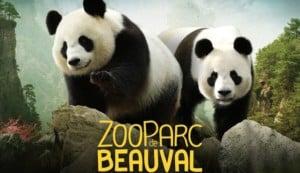zoo de beauval-alimentation