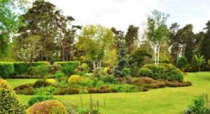 arboretum-versailles-chevreloup