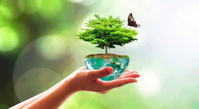Plan Biodiversité : pour une protection plus active de la Nature