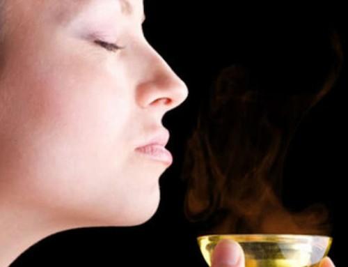 Dans le Noir : une expérience olfactive très originale