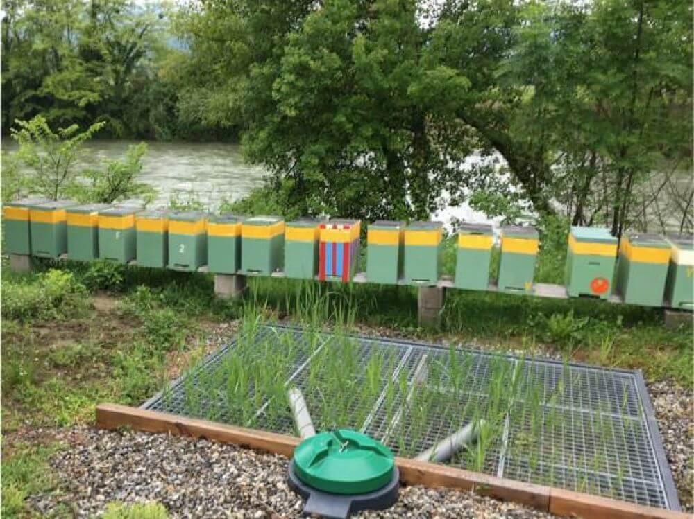 """la station d'épuration """"Smart clean garden"""":dépolluer les eaux usées"""