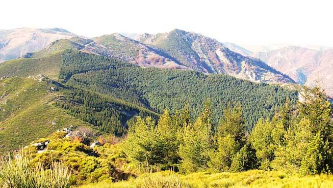 Monts d'Ardeche