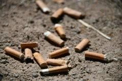 Les mégots polluent