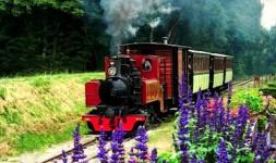 Train Du Bas Berry