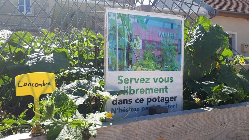 Environnement et croissance verte