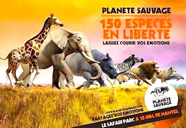Le parc animalier Planète Sauvage accueille 1.100 animaux.