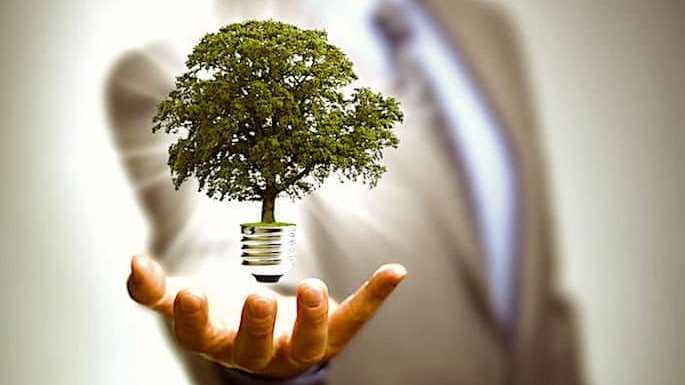 Energie renouvelable : sa proportion augmente, mais à quel prix ?