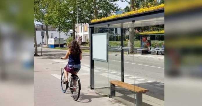 un cycliste passant devant un abribus