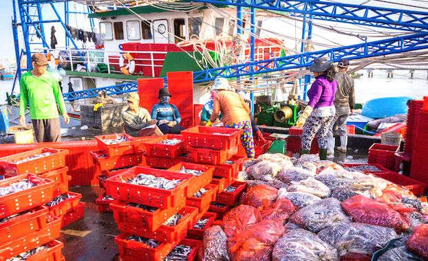 Les incertitudes du Brexit inquiètent toute la filière de la pêche française.