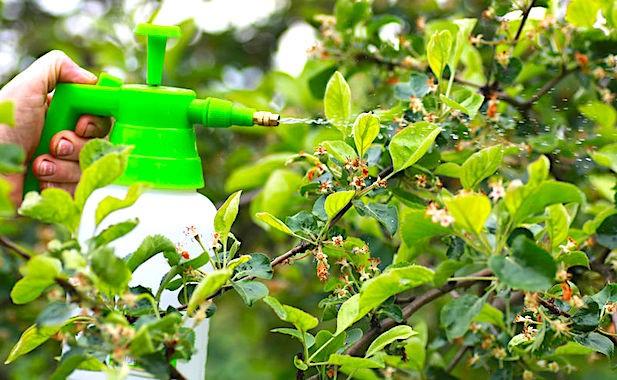 Les ventes de pesticides ont augmenté en France en 2018.
