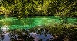 L'outil collaboratif Vos Idées vertes permet de promouvoir une écologie citoyenne