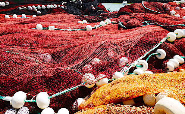 Le Projet Indigo a pour but de promouvoir l'usage de filets de pêche biodégradables.