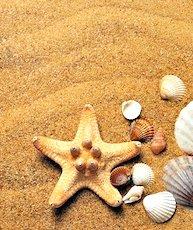 La réouverture des plages, parfois problématique, a contraint certains maires de plusieurs villes du littoral à faire marche arrière.