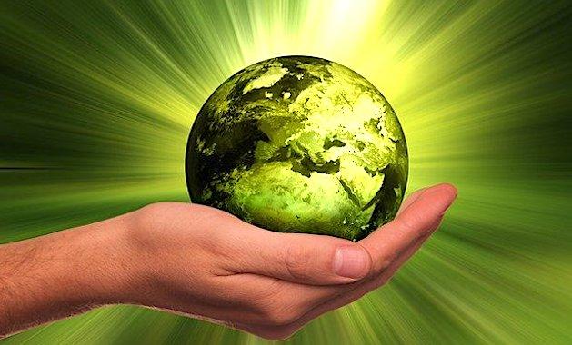 Le crime d'écocide pourrait bientôt être légalement validé en France.