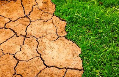 Un début de sécheresse commence à se manifester dans le nord de la France.