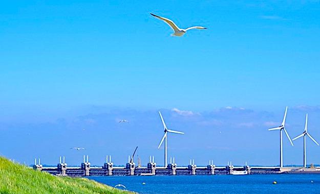La transition écologique occupera une place majeure dans le Plan de relance.