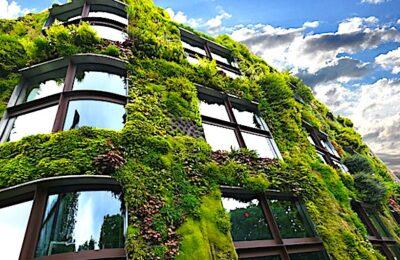 Contrer le réchauffement climatique dans les villes nécessite une plus grande végétalisation.