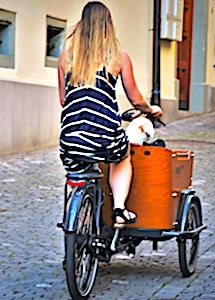 Promouvoir l'usage du vélo va permettre à la Seine-Saint-Denis de soulager son trafic routier