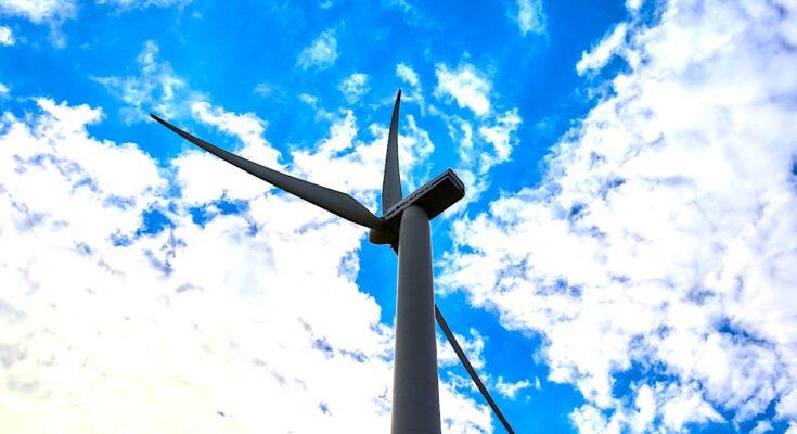 Un parc éolien citoyen montre la réussite d'une société coopérative bretonne
