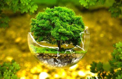 Trois mois de délai ont été donnés par le Conseil d'Etat au Gouvernement pour prouver son efficacité écologique