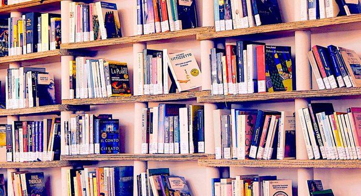 Une insoumission emblématique : une librairie cannoise hors-la-loi