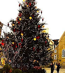 Un sapin de fête, refusé par Bordeaux, servira à Noël dans une petite commune de Corrèze.