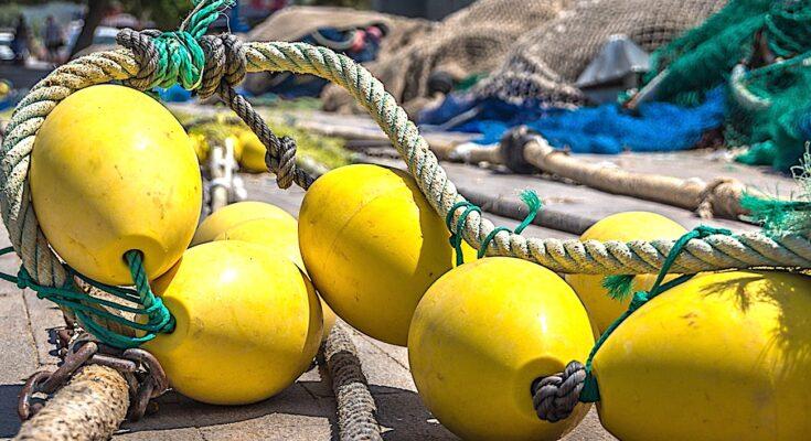 Un Plan d'aide aux pêcheurs français devrait compenser les pertes du Brexit