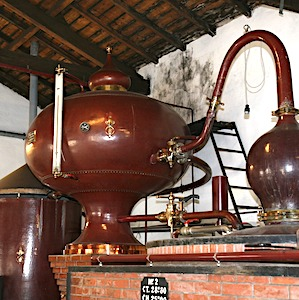 Bientôt, la taxe sur le cognac aux Etats-Unis atteindra 25 %.