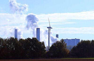 Pour faire condamner l'Etat, quatre ONG écologistes mènent une action.
