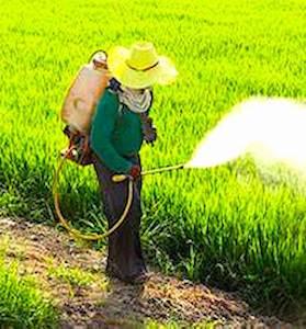 A Fors, le maire a négocié un arrêt des pulvérisations de pesticides contre un dédommagement.