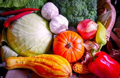 L'agriculture biologique enregistre une progression constante en France
