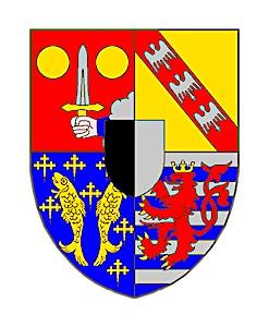 En Moselle, la visite d'Olivier Véran n'a pas fait baisser l'inquiétude face aux variants du virus.