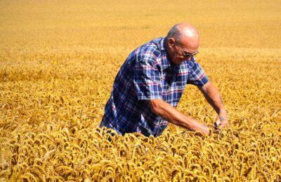 Pour une meilleure protection des agriculteurs, l'exécutif veut instaurer des prix minimaux de leurs produits.