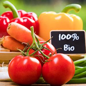 Avec 28 % de terres agricoles cultivées sans pesticides, Lauzach est une commune labellisée bio.