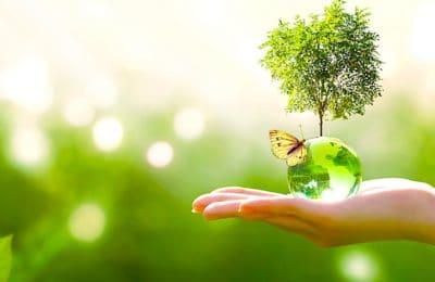Pour mieux protéger l'environnement, une modification de la Constitution pourrait survenir.