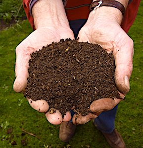 Des distributions de compost végétal auront lieu aujourd'hui à Guidel, une commune bretonne, à la fois écologique et solidaire.