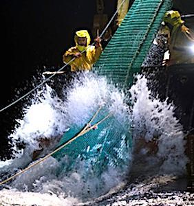 vue de filets pour une interdiction de la pêche électrique