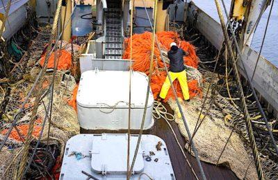 L'interdiction de la pêche électrique en mer du Nord prendra effet dès cet été.