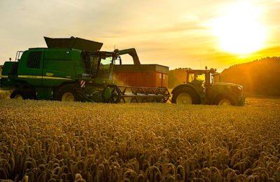 Souveraineté alimentaire : la France doit stopper sa guerre des prix