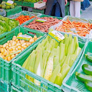 La France doit préserver sa souveraineté alimentaire, malgré un contexte difficile.