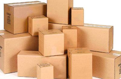 Avec ses emballages verts, la société lilloise Embaleo rend le e-commerce plus vertueux.
