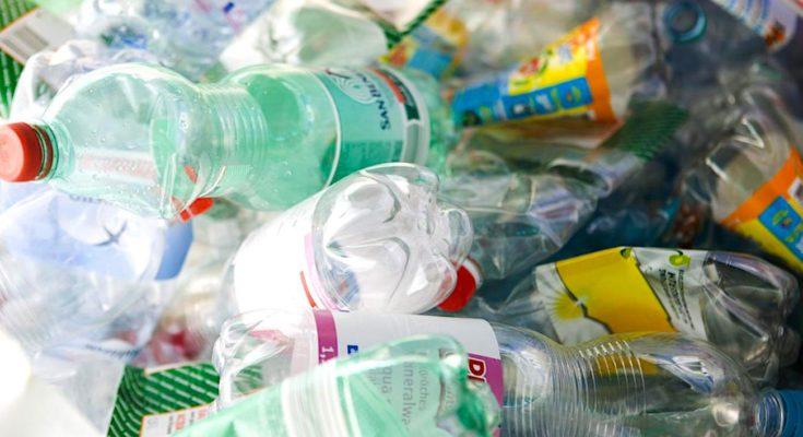 Bouteilles en plastique rémunérées : un recyclage utile dans les Yvelines