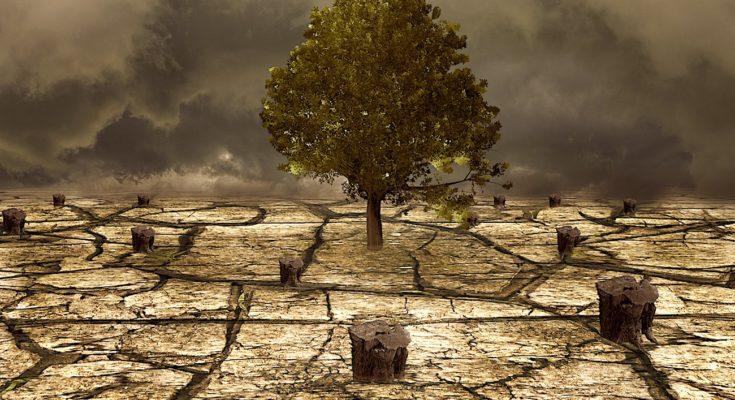 La sécheresse dans 13 communes des Hauts-de-Seine reconnue