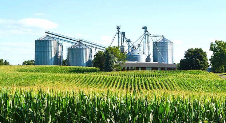 Avantages de l'agriculture connectée : une évolution radicale