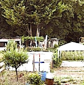 Une menace plane aujourd'hui sur les jardins ouvriers d'Aubervilliers. Une mobilisation pour les protéger est en cours.